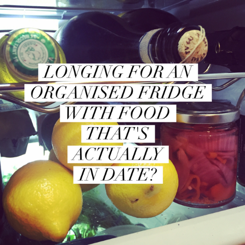 Longing-for-an-organised-fridge.png