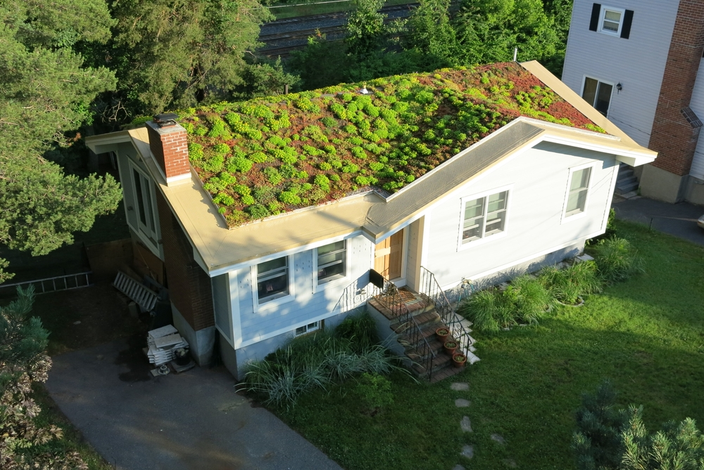 Recover-Green-Roofs-Residential-Green-Roof-Sloped