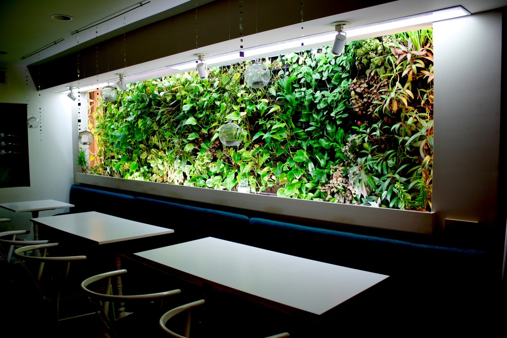 Recover-Green-Roofs-Green-Wall-Restuarant-1
