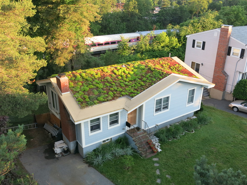 Recover-Green-Roofs-Residential-Green-Roof-Ranch-3