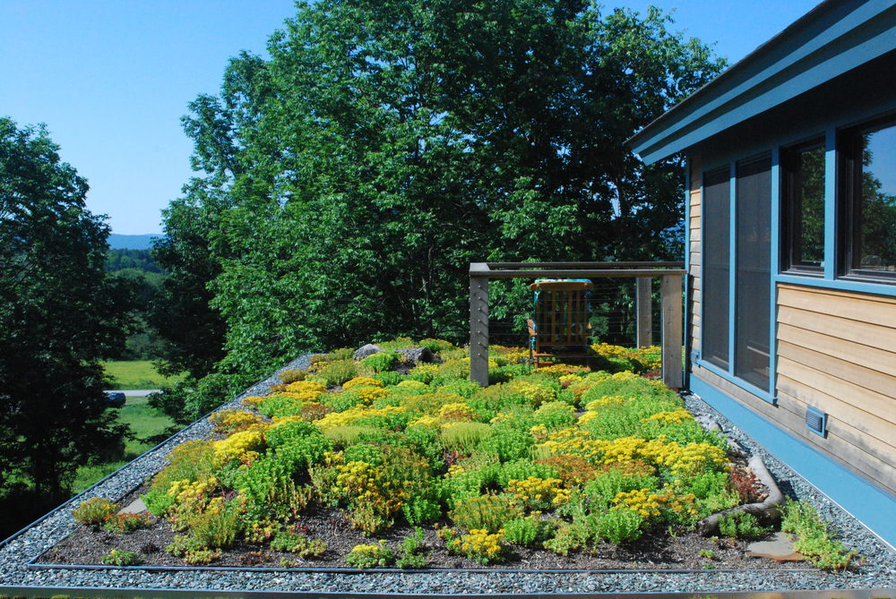 Recover-Green-Roofs-Residential-Green-Roof-Sedum-Extensive-Vermont