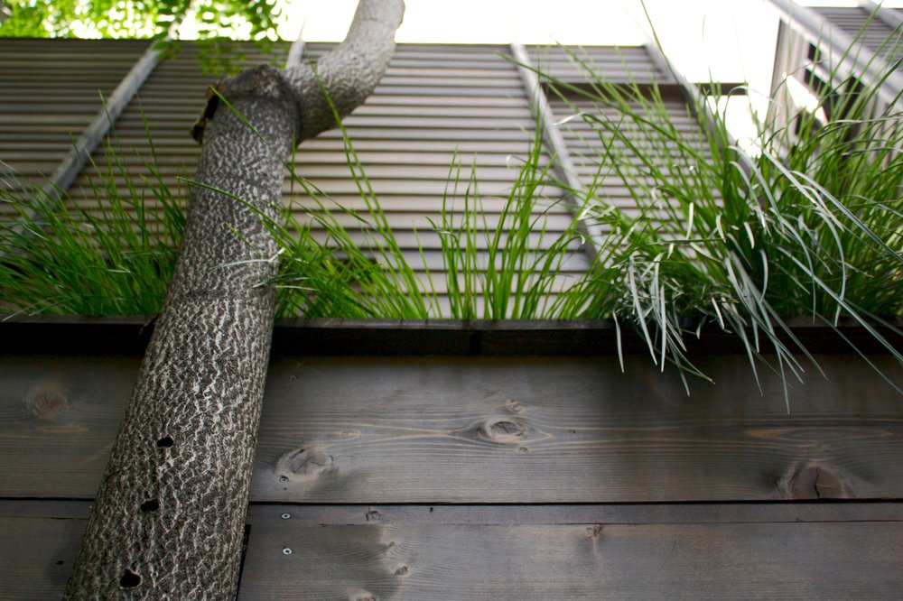 Recover-Green-Roofs-Residential-Green-Roof-Garden-House-1
