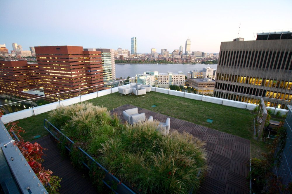 WatermarkResidences_RecoverGreenRoofs_2016.jpg