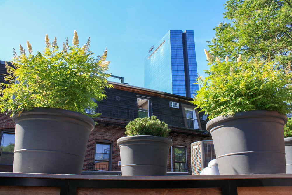 recover-residential-roof-deck-boston-20180628-32.jpg