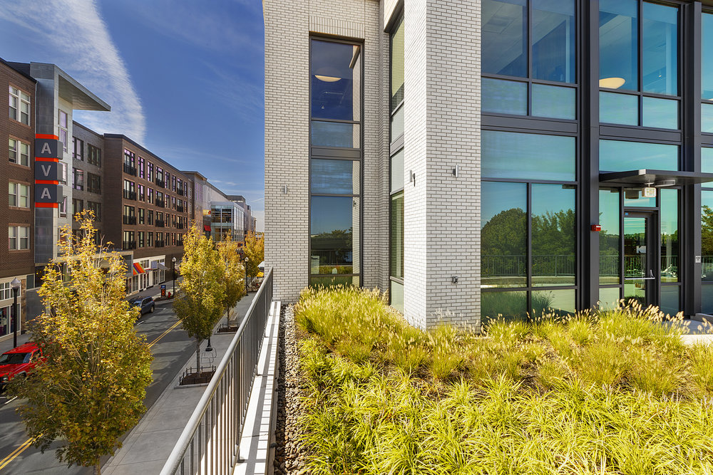 recover-green-roofs-assembly-row-patrick-rogers-2016-7.jpg