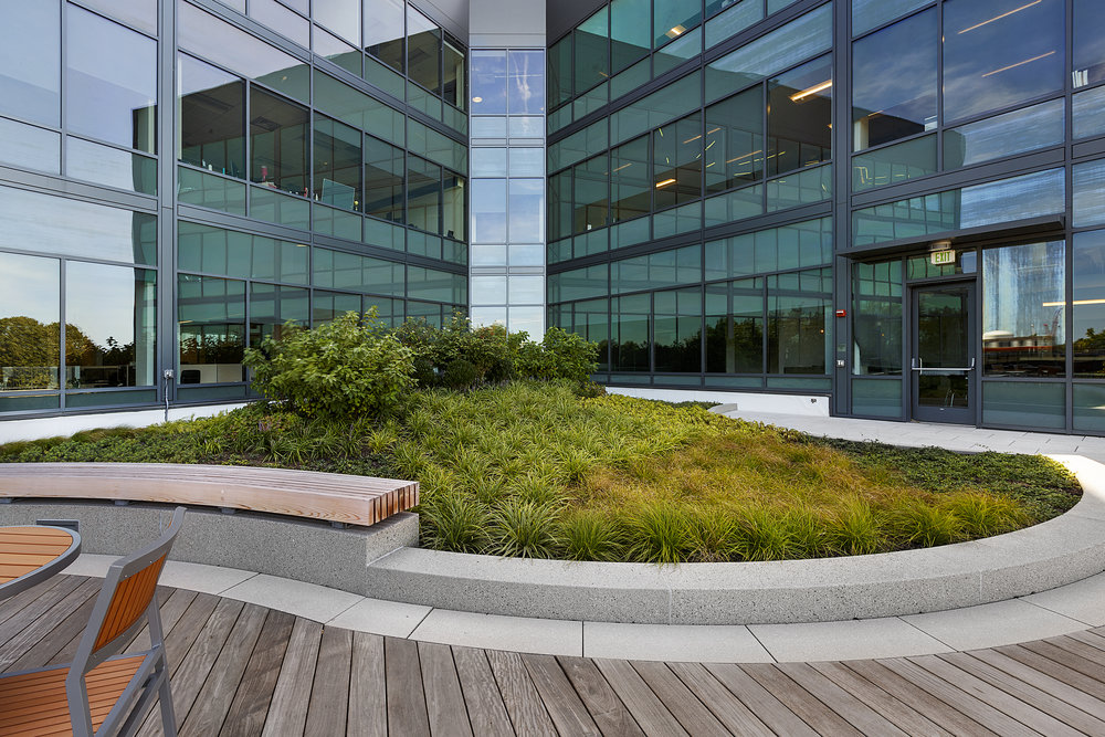 recover-green-roofs-assembly-row-patrick-rogers-2016-45.jpg