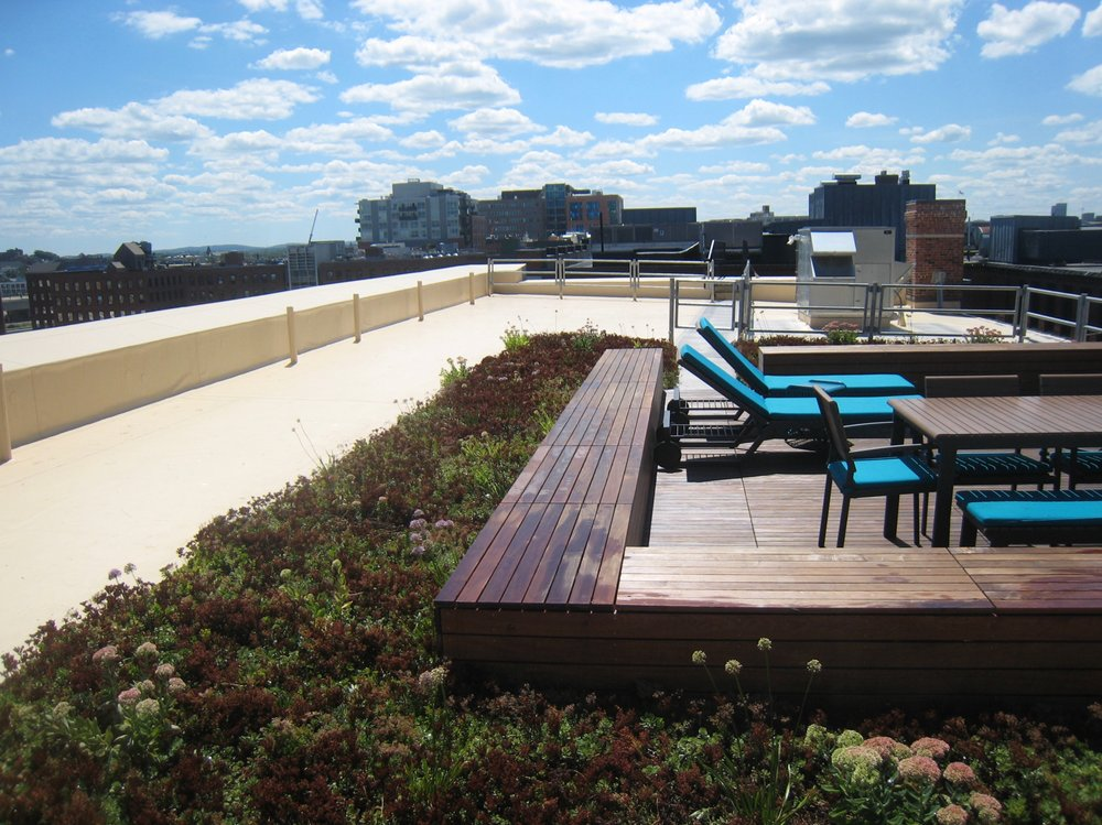 recover-green-roofs-factory-63-boston-16.jpg