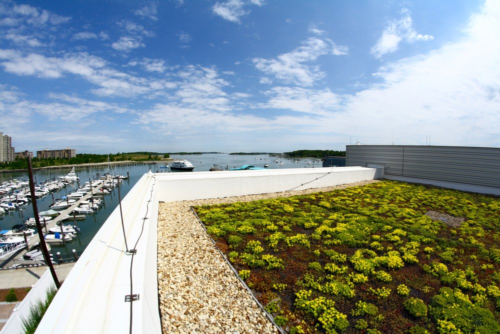 recover-green-roofs-hingham-mbta-2016-17.jpg