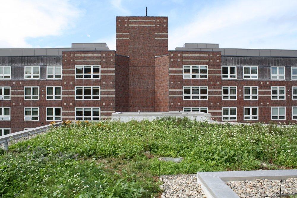 recover-green-roofs-harvar-business-school-rooftop-garden-2016-10.jpg