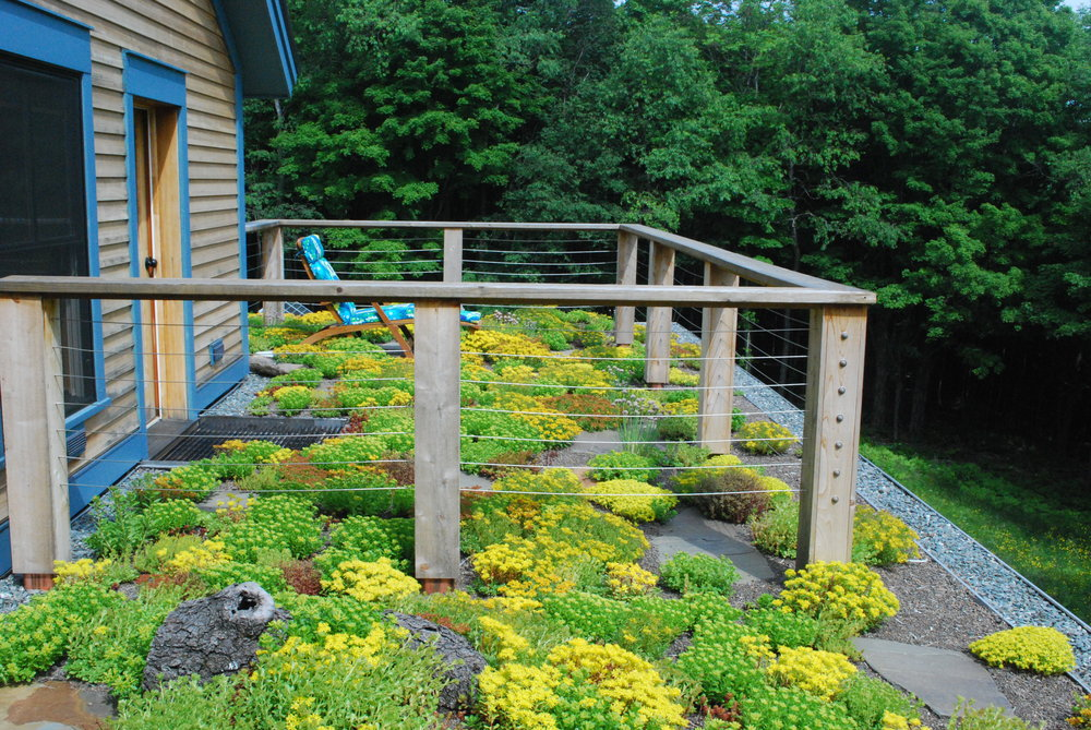 recover-green-roofs-master-balcony-vermont-2014-3.JPG