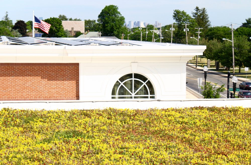 recover-green-roofs-quincy-middle-school-2013-8.jpg