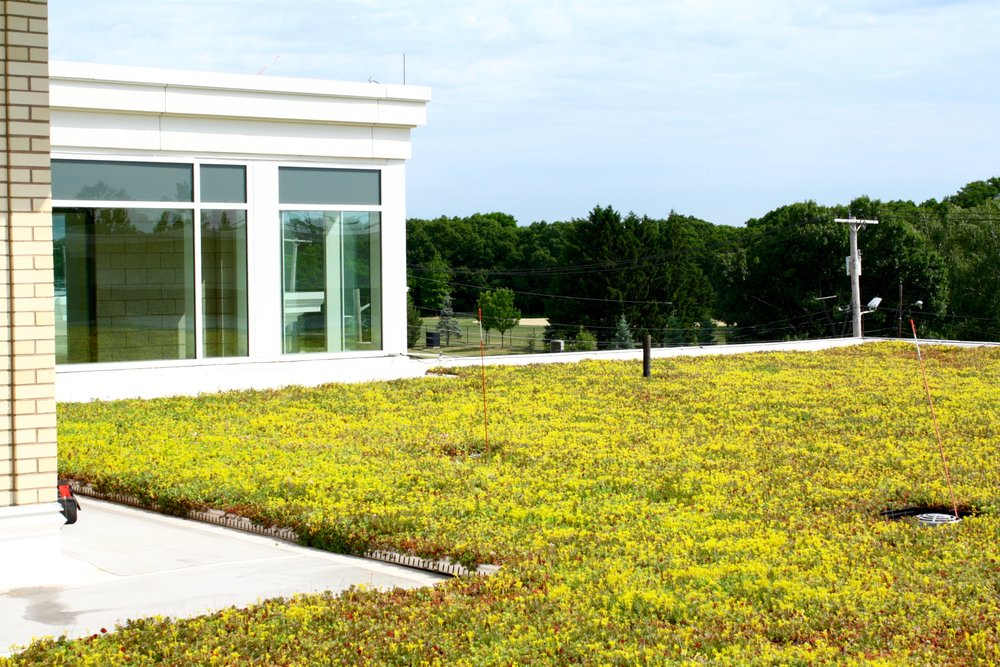recover-green-roofs-quincy-middle-school-2013-11.jpg