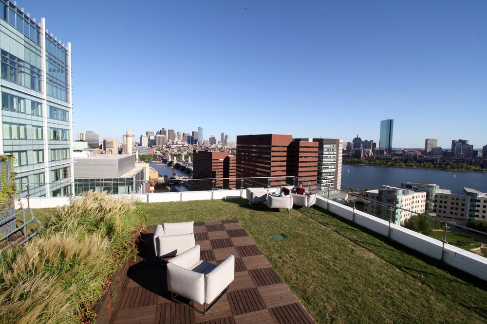 recover-green-roofs-watermark-rooftop-lounge-2016-9.jpg
