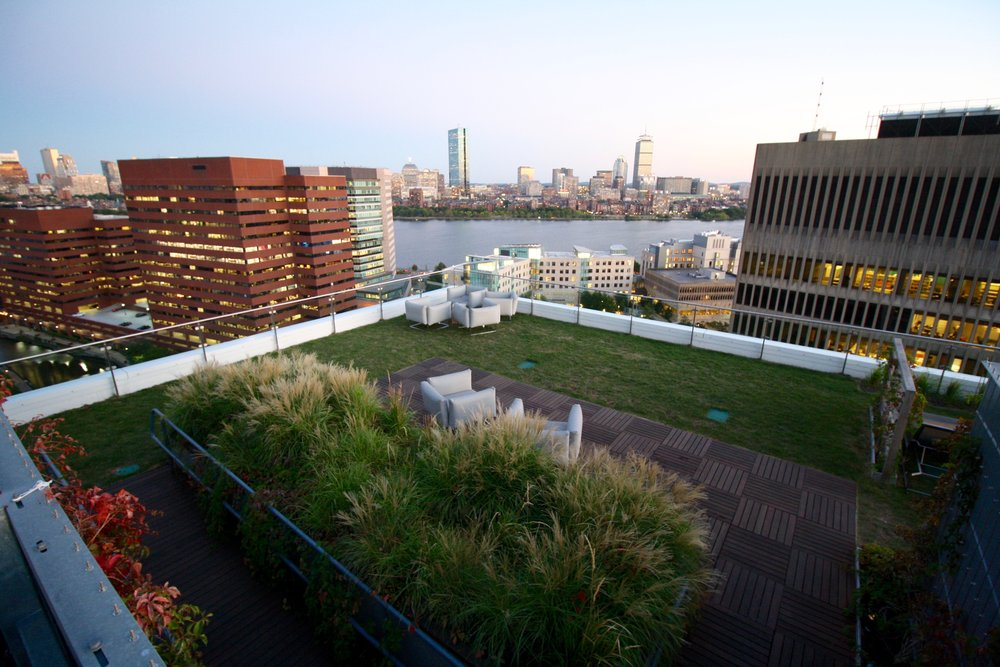 recover-green-roofs-watermark-rooftop-lounge-2016-13.jpg