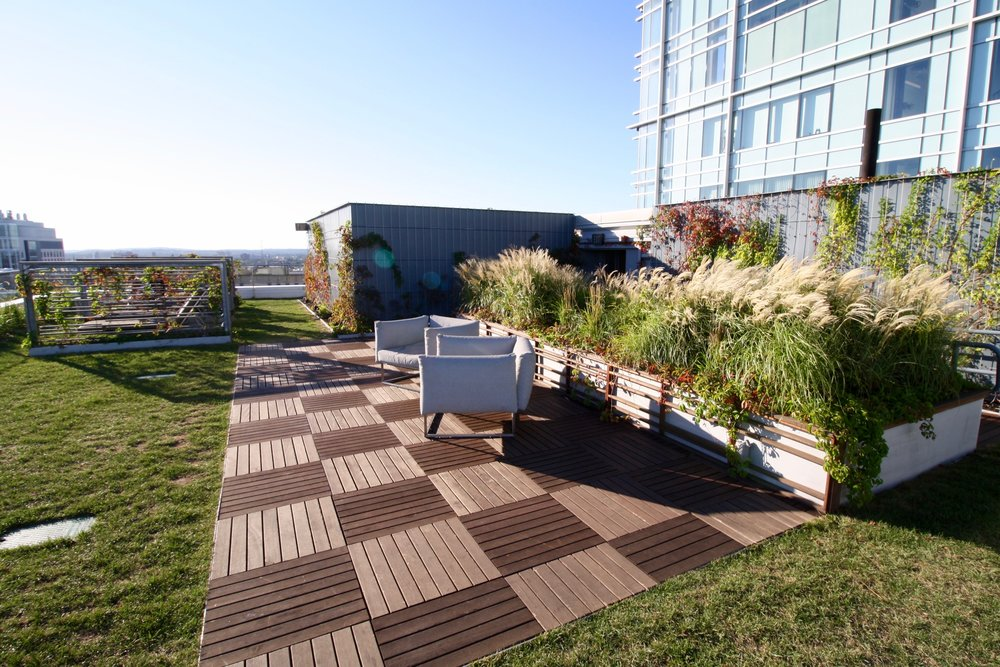 recover-green-roofs-watermark-rooftop-lounge-2016-12.jpg