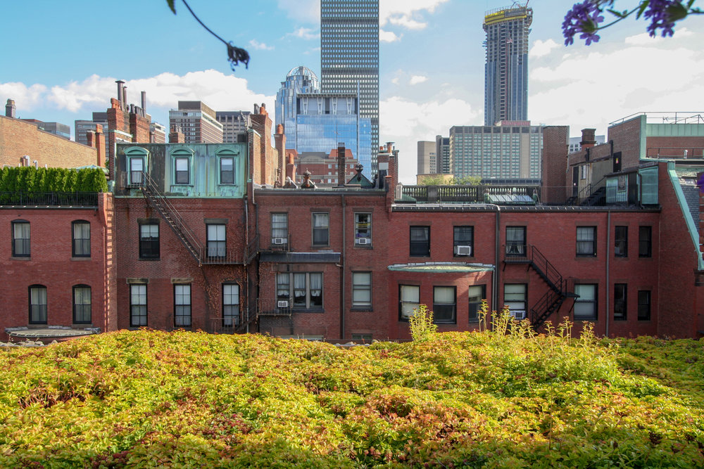 recover-green-roofs-residential-roof-deck-kitchen-55.jpg