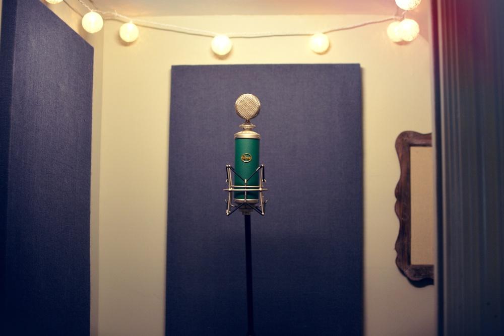 mic close21.jpg