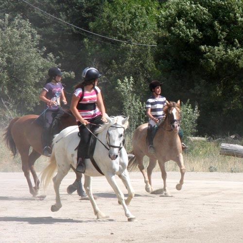 HORSE RIDING CAMP (5).jpg