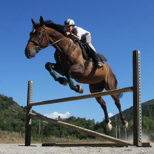 HORSE RIDING CAMP (9).jpg