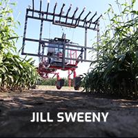 Jill Sweeny