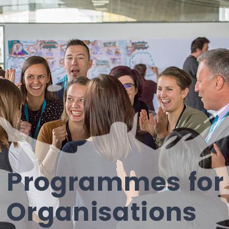 Programmes_Org_EN Kopie.jpg
