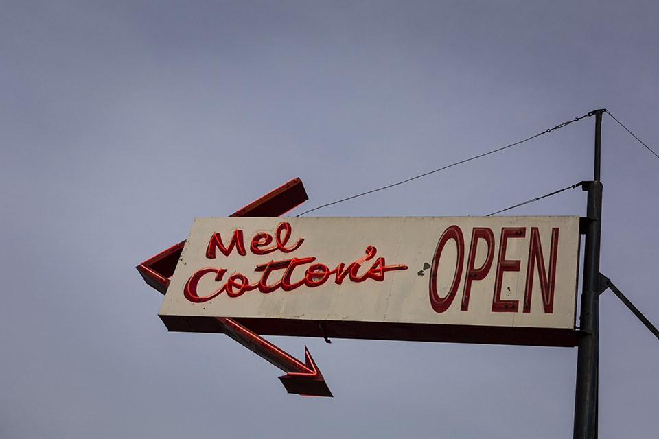 Mel Cottons Josh Marcotte.jpg
