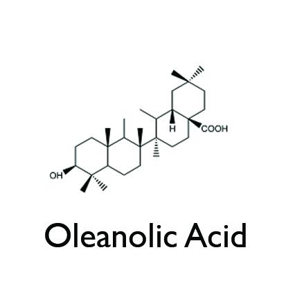 Oleanolic Acid.jpg