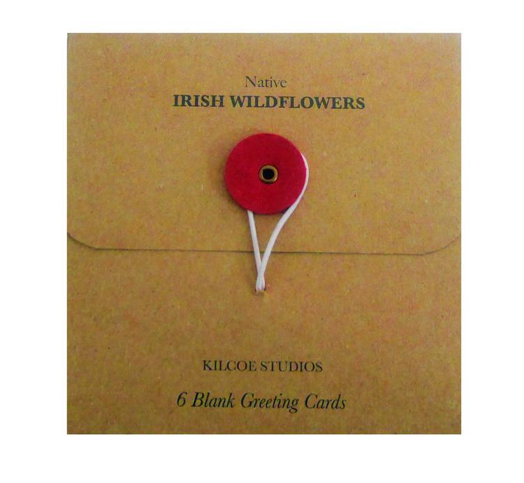 A set of native irish wildflowers greeting cards modern botany a set of native irish wildflowers greeting cards m4hsunfo