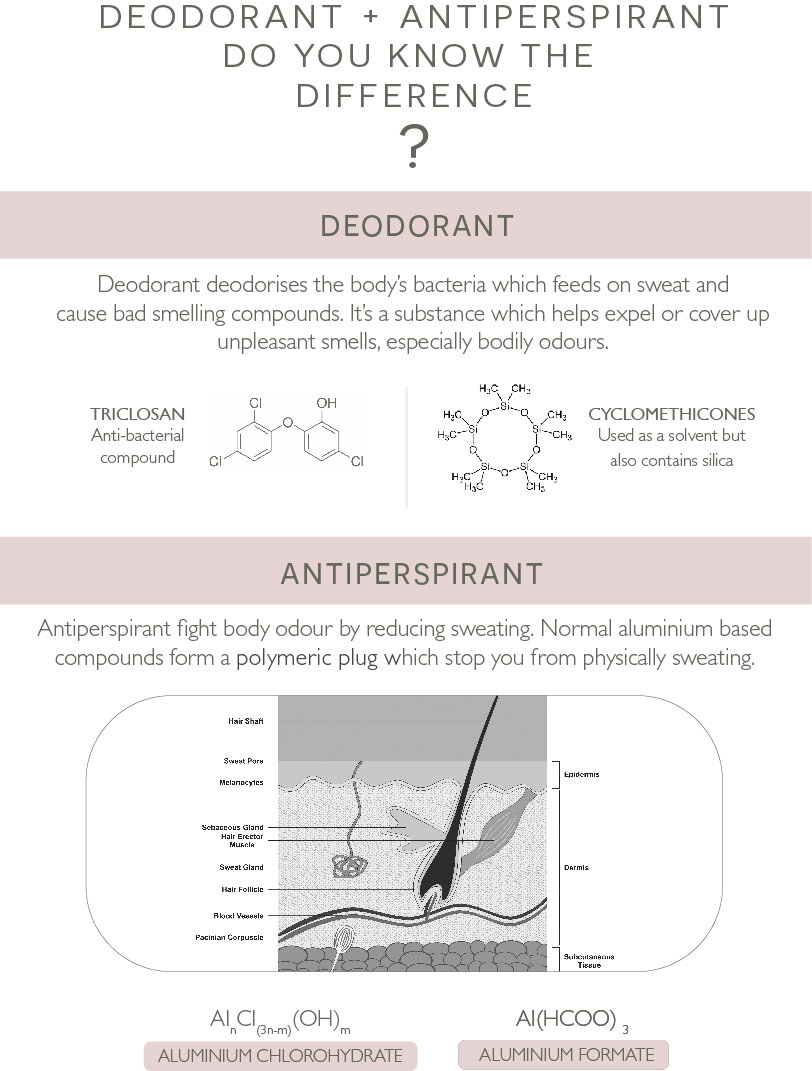 Infographic of the Modern Botany Deodorant