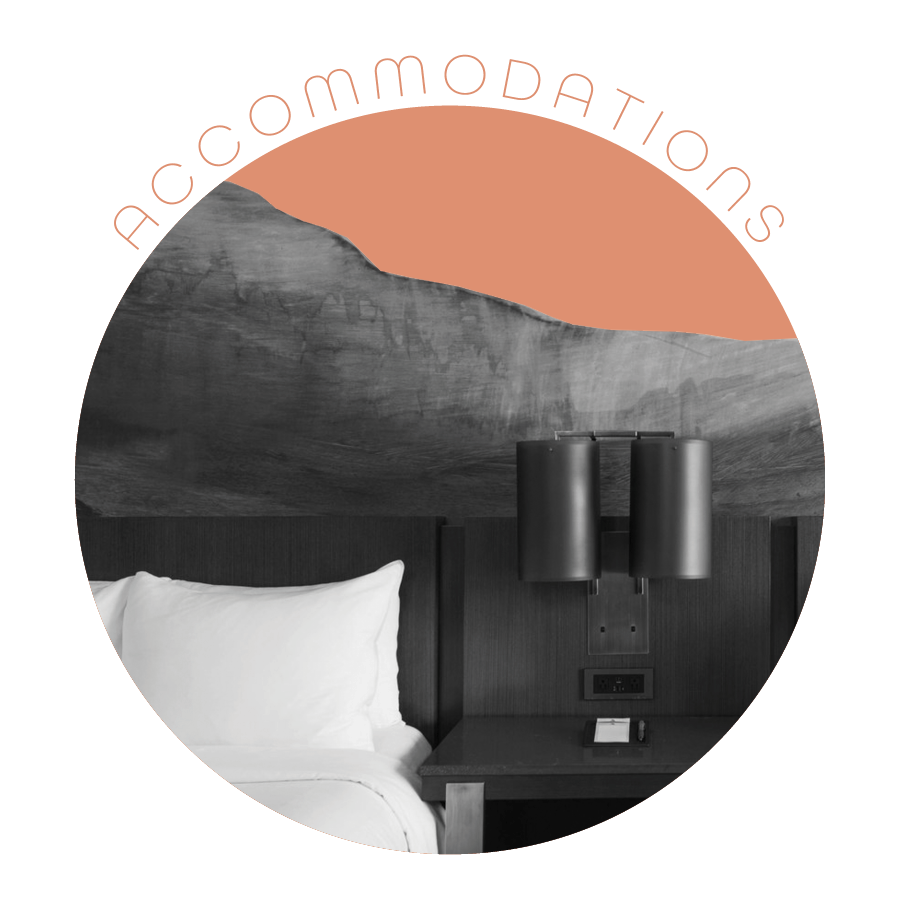TC accommodations online.png