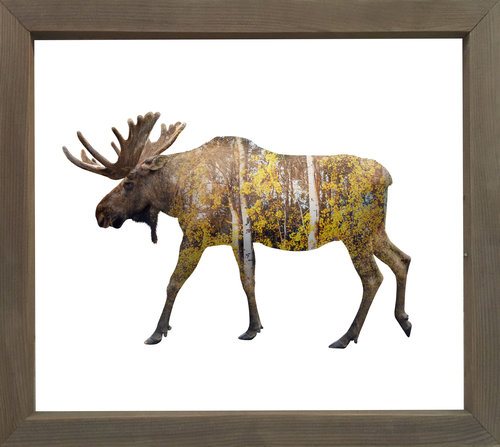 Birch Forest Moose — Cedar Mountain Studios