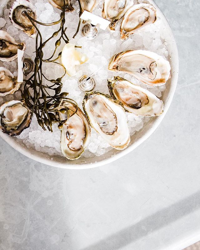 May your Valentine's Day be filled with love and oysters 💕📷: @amsullivan @meritage.stp