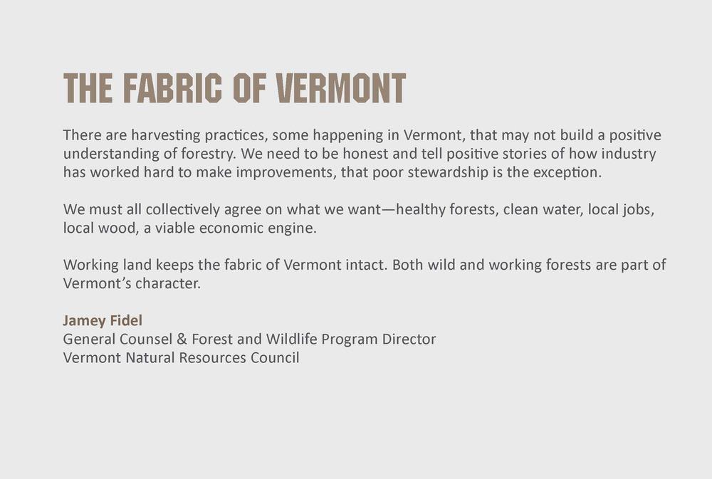 VFC_Forest_PresentPanels_PRINT_Page_3.jpg
