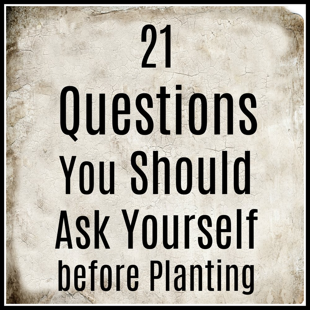 21 Questions You Should Ask Yourself before Planting.jpg