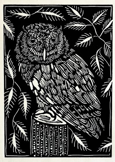 "Eastern Screech Owl 2015, linoleum print on rice paper. 7"" x 5"""