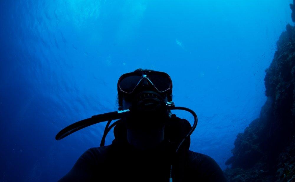 joe-bourne-underwater-photographer.jpg