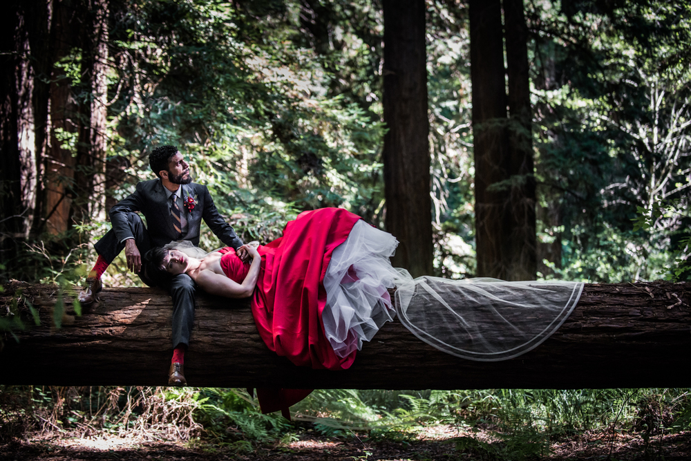 mendocino_redweddingdress_redwoods_realwedding_couple