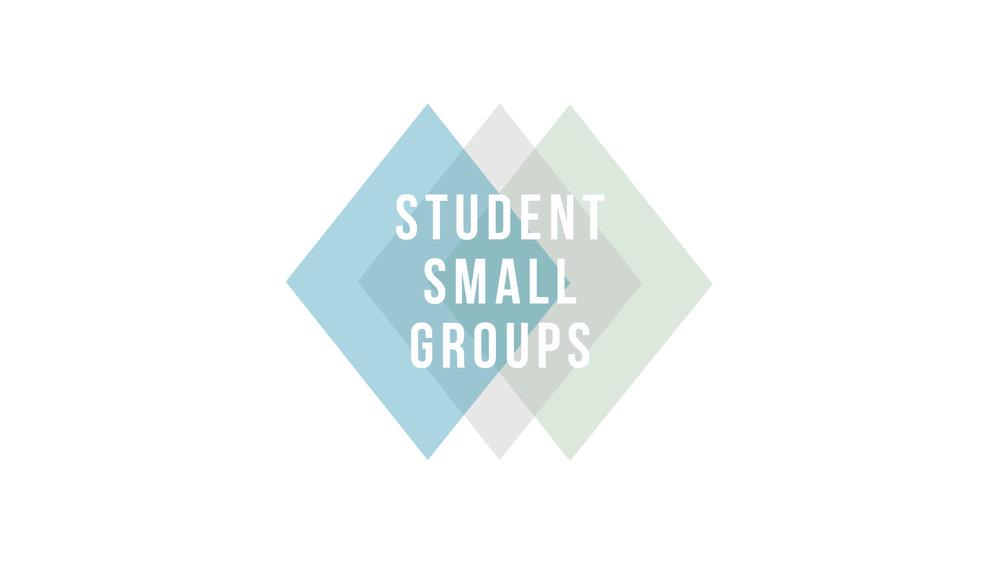 Student Small Groups Slide.jpg