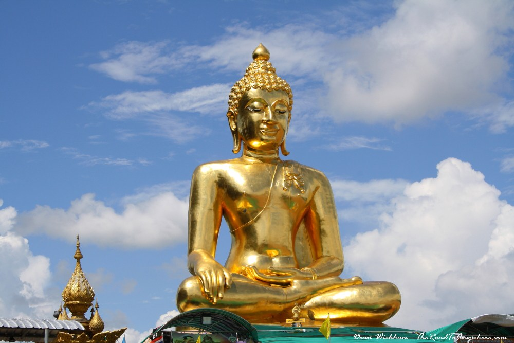 - You're a lot like a golden buddha, believe it or not...