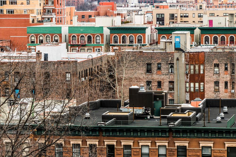 Harlem Rooftops