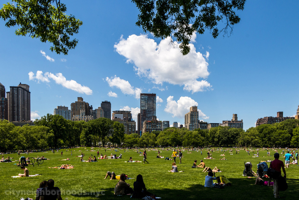 Sheep Meadow - Central Park - NYC