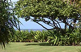 <strong>Sold for $949,000</strong><br>Hanalei, Kauai