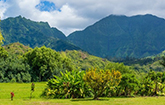 <strong>Sold for $785,000</strong><br>Hanalei, Kauai