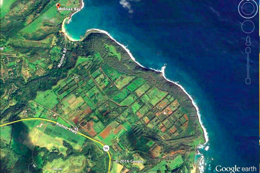 Moloaa Aerial 1.jpg