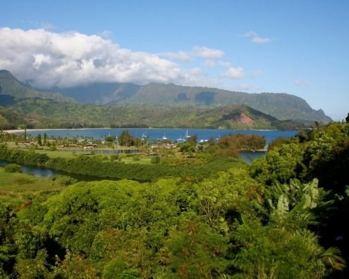 "<div align=left><span style=""color:#13b5ea""><strong>Hanalei Plantation Road Rim Lot</strong><br>Sold for $1.5M 