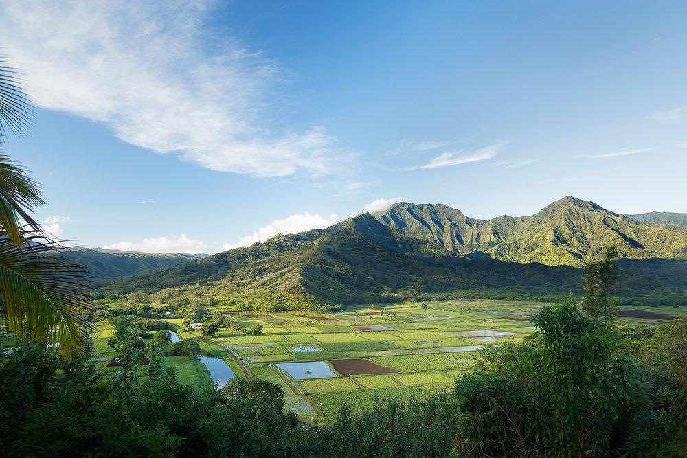 Hanalei Valley.jpg