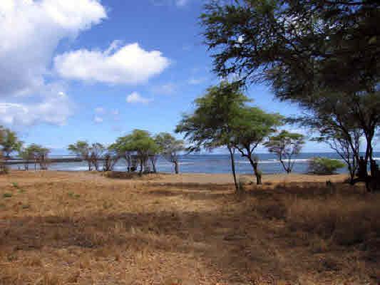 """<div align=left><span style=""""color:#13b5ea""""><strong>Kekaha, West Shore Kauai</strong><br>1.03-Acres Land<br>$995,000</span></div>"""
