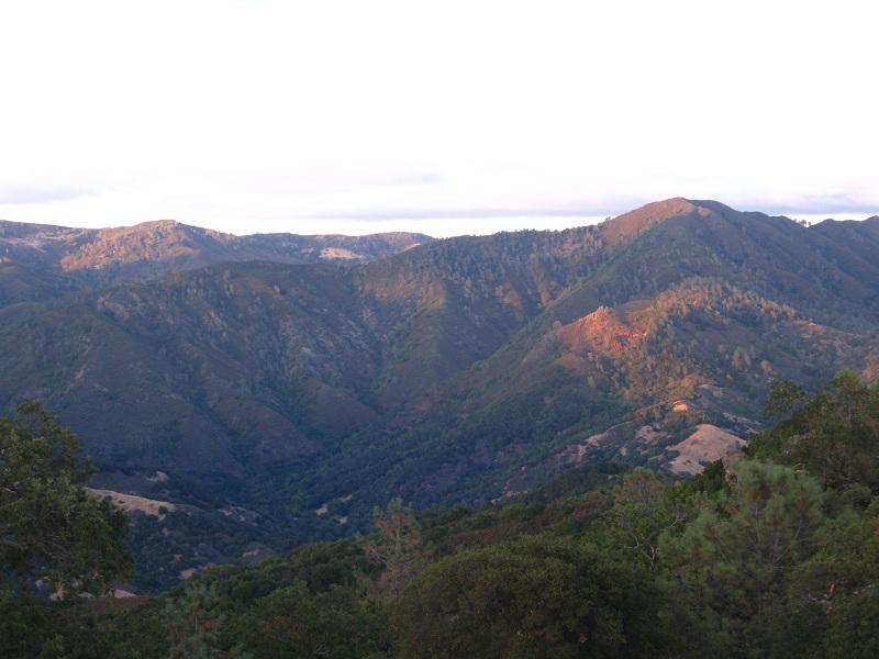 Landscape LCA.jpg