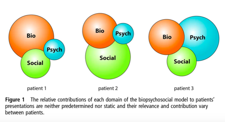 Gwen Jull represents the variety of influence from the different domains of the biopsychosocial. Meet your patient were they are at!