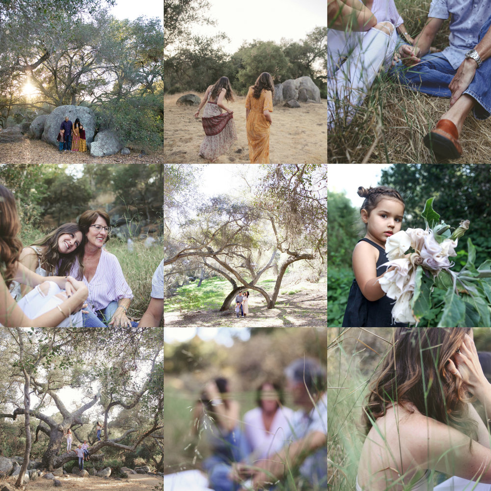 images from felicita park where the mini sessions will be held.